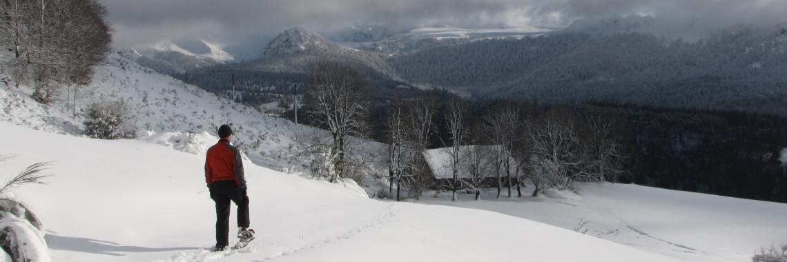 Sneeuwschoenwandelen nabij Chez Tamboine