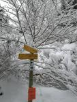 Signposted snowshoe walk