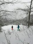 Snowshoe walkers