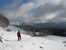 Endless snowshoe possibilities